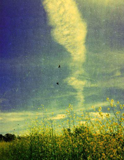 Sky Story