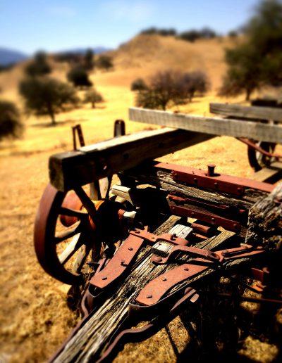 Wagon I